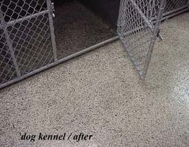 Dog Kennel after Flex Bon